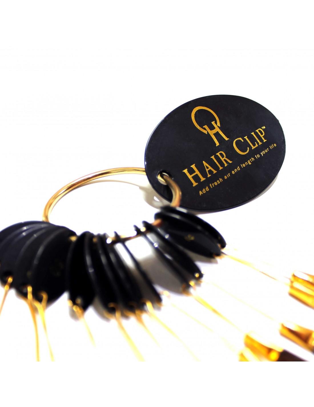 nuancier de cheveux hair clip regroupe toutes les couleurs de cheveux. Black Bedroom Furniture Sets. Home Design Ideas