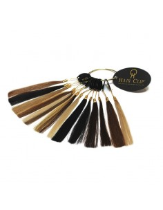 Nuancier de Cheveux HAIR CLIP
